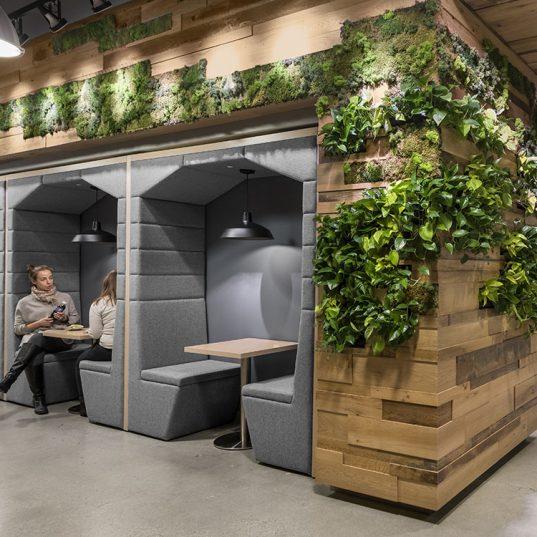 Modern office space, workspace, ivy, biophilic design